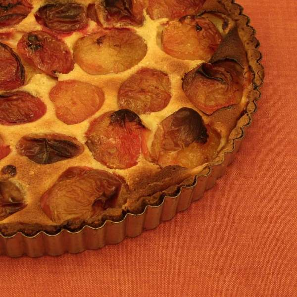 French Plum Tart
