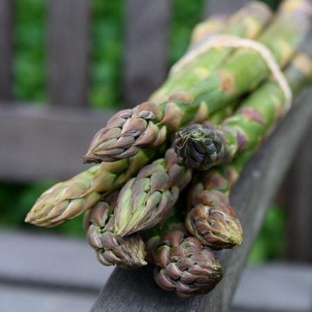 Asparagus, Hollandaise, beer – the Holy Trinity