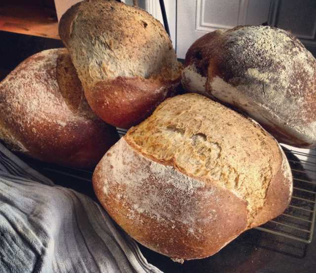 5 reasons to bake your own bread